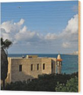 Old Port Lookout Point Wood Print