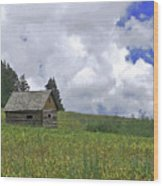 Old Ranchers Summer Cabin Redone Wood Print