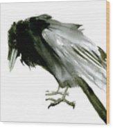 Old Raven Wood Print
