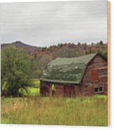 Old Red Adirondack Barn Wood Print by Nancy De Flon