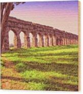 Old Roman Aqueduct Wood Print