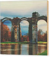 Old Roman Aqueduct Wood Print