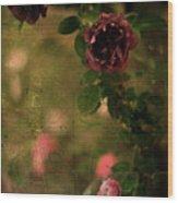 Old Roses Wood Print