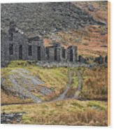 Old Ruin At Cwmorthin Wood Print
