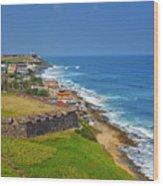 Old San Juan Coastline Wood Print