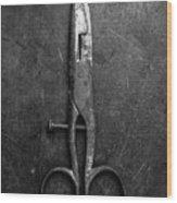 Old Scissors Wood Print