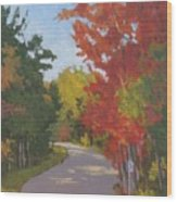 Old Scoolhouse Road Fall - Art By Bill Tomsa Wood Print