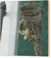 Old Sea Rope Wood Print