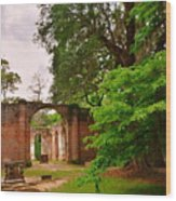 Old Sheldon Church Ruins 3 Wood Print