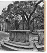 Old Sheldon Church Ruins Beaufort Sc Black And White Wood Print