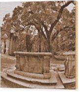 Old Sheldon Church Ruins Beaufort Sc Sepia Wood Print