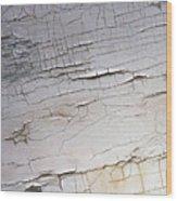 Old Siding Wood Print