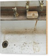 Old Sink Wood Print