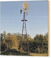 Old Southern Windmill Wood Print