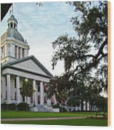 Old State Capitol Wood Print