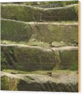 Old Stone Steps Wood Print