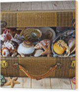 Old Suitcase Full Of Sea Shells Wood Print by Garry Gay
