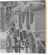 Old Time Horse And Buggy Wood Print