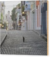 Old Town Alley Cat Wood Print