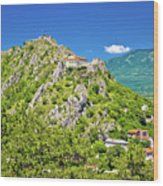 Old Town Knin On The Rock View Wood Print