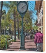 Old Town Santa Barbara Wood Print