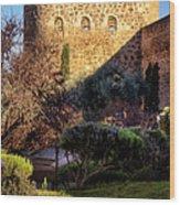 Old Town Walls Toledo Spain Wood Print