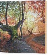 Old Tree Wood Print
