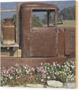 Old Truck In Tennessee Wood Print
