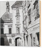 Old Viennese Courtyard Wood Print