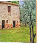 Old Villa And Olive Trees Wood Print