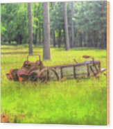 Old Wagon In Field Wood Print