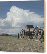 Old Wagon Out West Wood Print