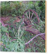 Old Wagon Wheels 2 Wood Print