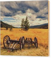 Old Wagons In Meadow Wood Print