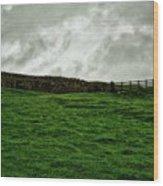 Old Wall, New Gate Wood Print