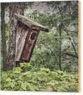 Old Weathered Worn Bird House In Summer Wood Print
