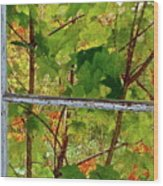 Old Window Wood Print
