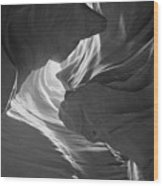 Old Woman In The Canyon Black And White Wood Print