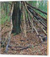 Old Woodland Hide. Wood Print