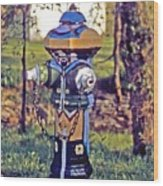 Oldenburg Fireplug Wood Print