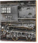 Ole #170 Wood Print