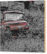 Ole Red Wood Print