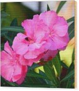 Oleander Blooming Wood Print