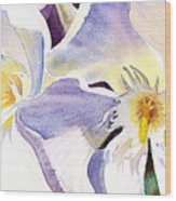 Oleander By Irina Sztukowski Wood Print