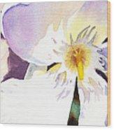 Oleander Flower By Irina Sztukowski Wood Print