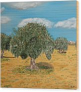 Olive Trees In Summer Wood Print