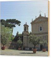 Olive Wood Trees Wood Print