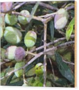 Olives Wood Print by Mindy Newman