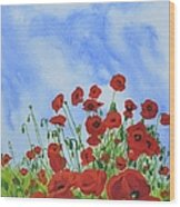 Olivia's Poppies Wood Print