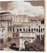 Colosseum From Roman Forums  Wood Print